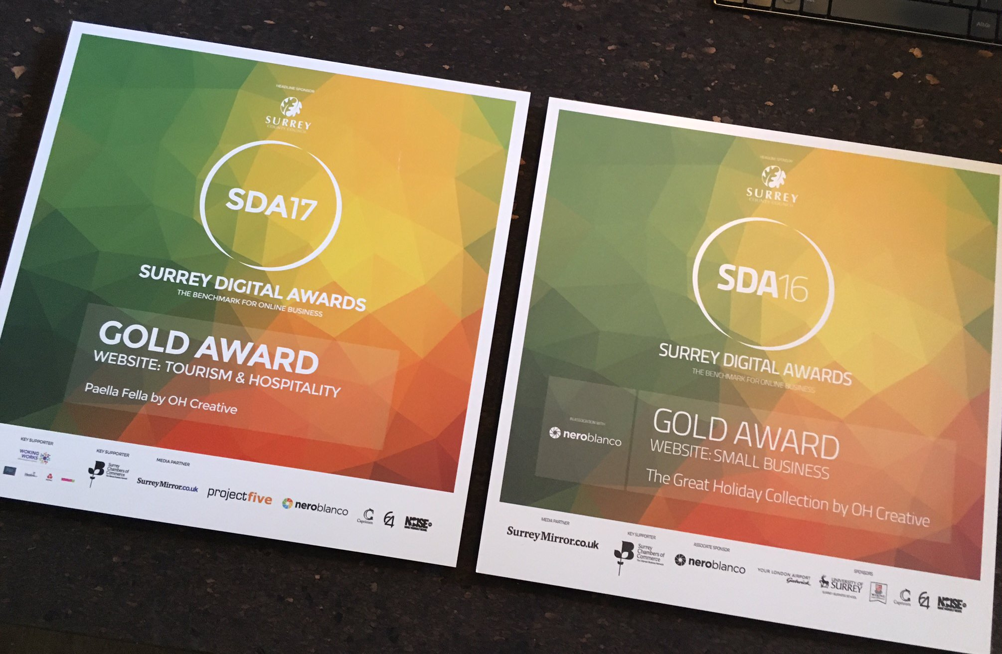 Another SDA Gold Award Win for OH Creative!